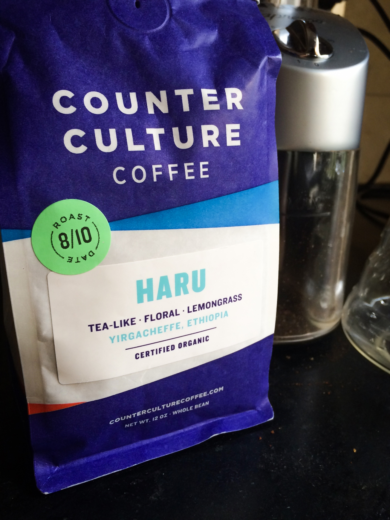 Counter Culture Haru